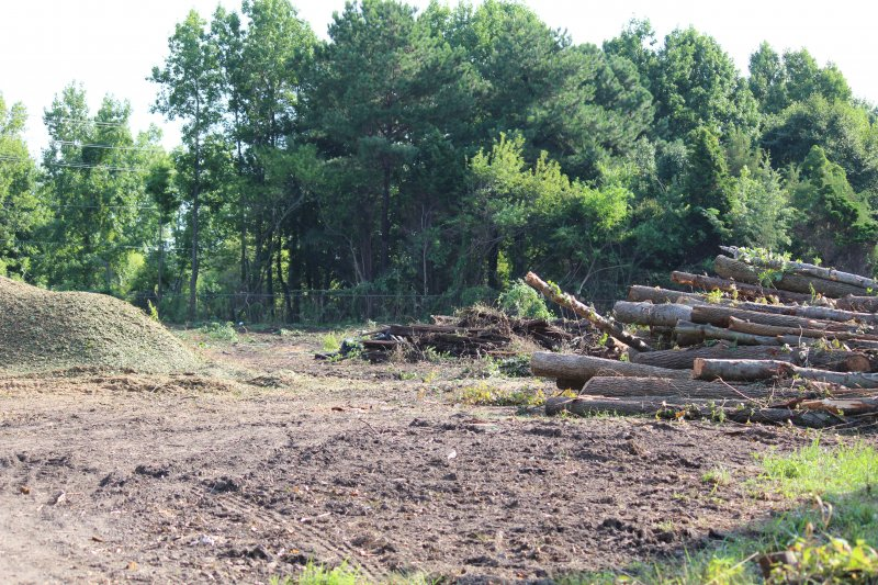 Advance-tree-care-of-virginia-beach-VA-lot-clearing-pic-3628