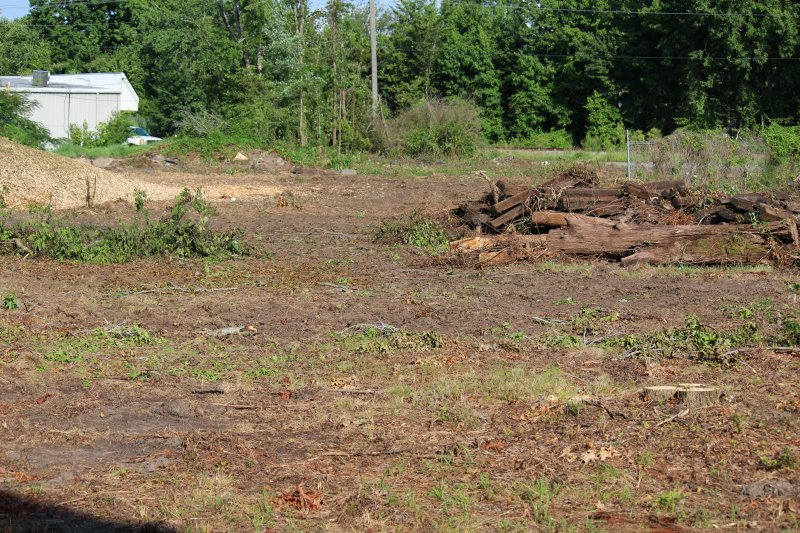 Advance-tree-care-of-virginia-beach-VA-lot-clearing-pic-3647