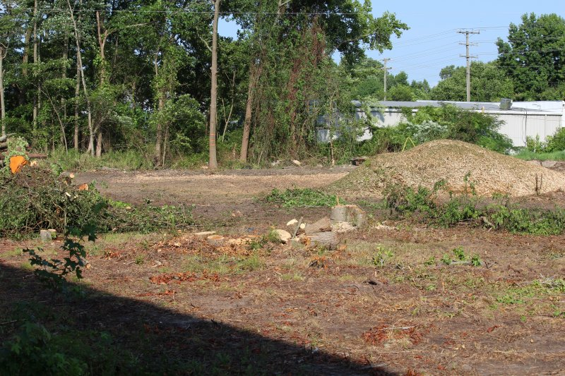 Advance-tree-care-of-virginia-beach-VA-lot-clearing-pic-3649
