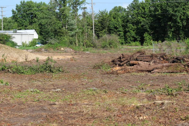 Advance-tree-care-of-virginia-beach-VA-lot-clearing-pic-3650