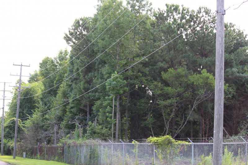 Advance-tree-care-of-virginia-beach-VA-lot-clearing-pic-3707