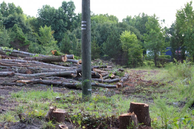 Advance-tree-care-of-virginia-beach-VA-lot-clearing-pic-3713