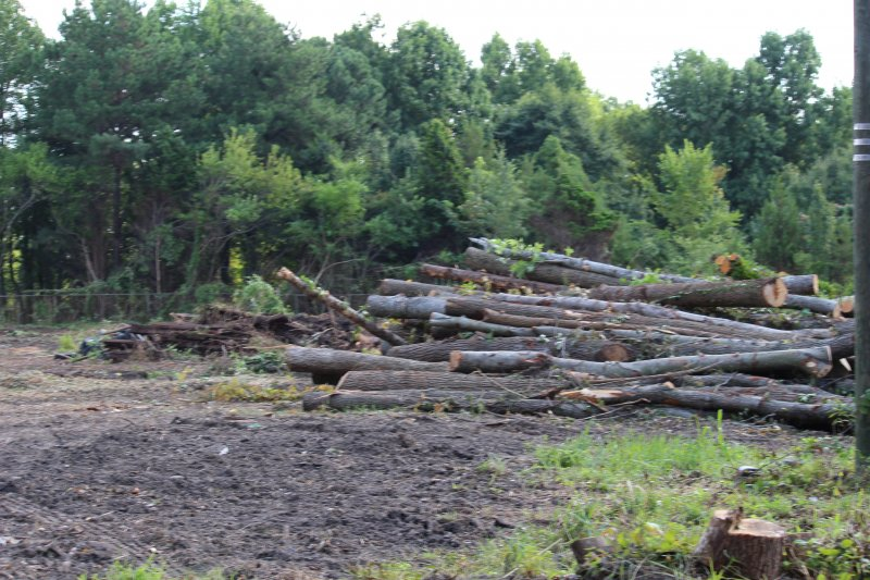 Advance-tree-care-of-virginia-beach-VA-lot-clearing-pic-3714