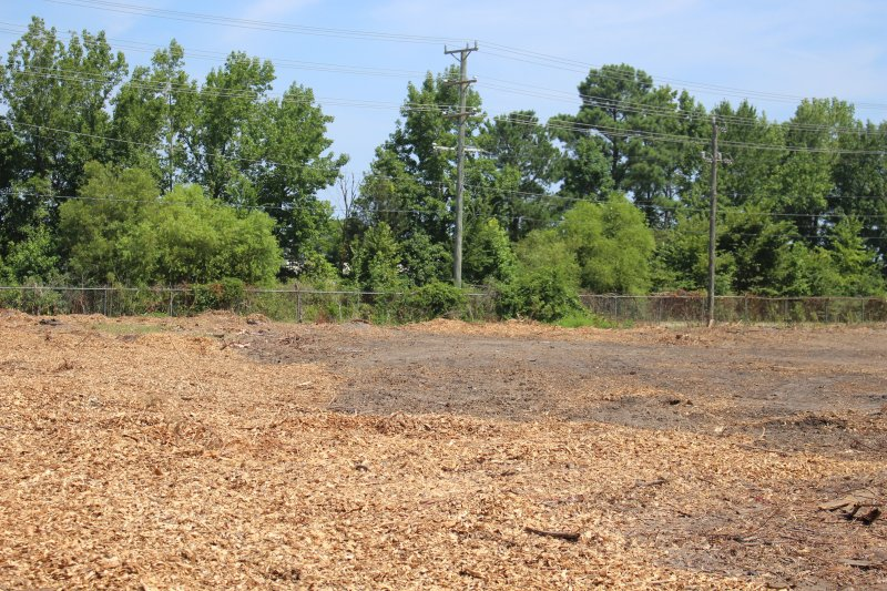 Advance-tree-care-of-virginia-beach-VA-lot-clearing-pic-4187