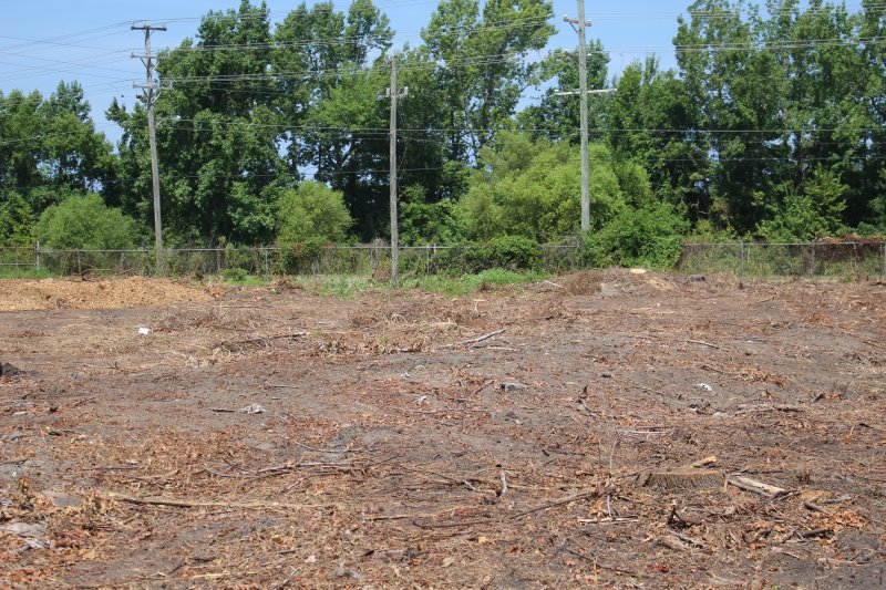 Advance-tree-care-of-virginia-beach-VA-lot-clearing-pic-4192