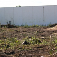Advance-tree-care-of-virginia-beach-VA-lot-clearing-pic-3632