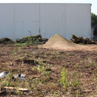 Advance-tree-care-of-virginia-beach-VA-lot-clearing-pic-3640