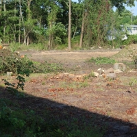 Advance-tree-care-of-virginia-beach-VA-lot-clearing-pic-3646