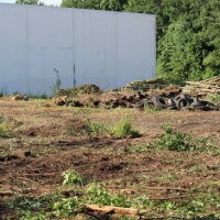 Advance-tree-care-of-virginia-beach-VA-lot-clearing-pic-3672
