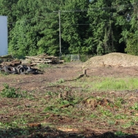Advance-tree-care-of-virginia-beach-VA-lot-clearing-pic-3679