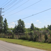 Advance-tree-care-of-virginia-beach-VA-lot-clearing-pic-4164