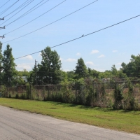 Advance-tree-care-of-virginia-beach-VA-lot-clearing-pic-4165