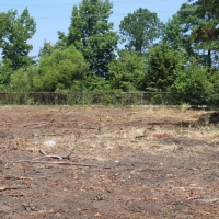 Advance-tree-care-of-virginia-beach-VA-lot-clearing-pic-4190