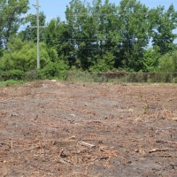 Advance-tree-care-of-virginia-beach-VA-lot-clearing-pic-4191