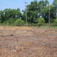 Advance-tree-care-of-virginia-beach-VA-lot-clearing-pic-4193