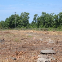 Advance-tree-care-of-virginia-beach-VA-lot-clearing-pic-4195