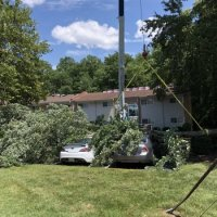 advance-tree-care-in-virginia-beach-virginia-storm-tree-removal-with-crane-pic2