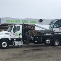 advance-tree-care-in-virginia-beach-virginia-storm-tree-removal-with-crane-pic3