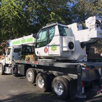 advance-tree-care-in-virginia-beach-virginia-storm-tree-removal-with-crane-pic6