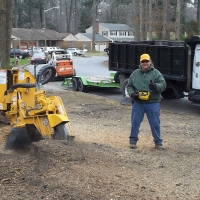 stump-grinding-pictures-177