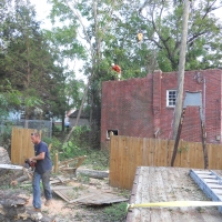 Virginia Beach Tree Removal Picture 48