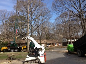 All of us Removing a Oak Tree that leaned over a homeowners house